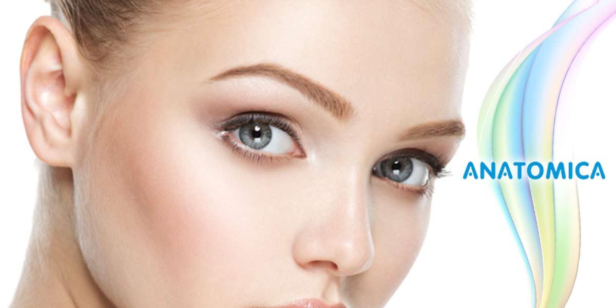 l implantation de sourcil